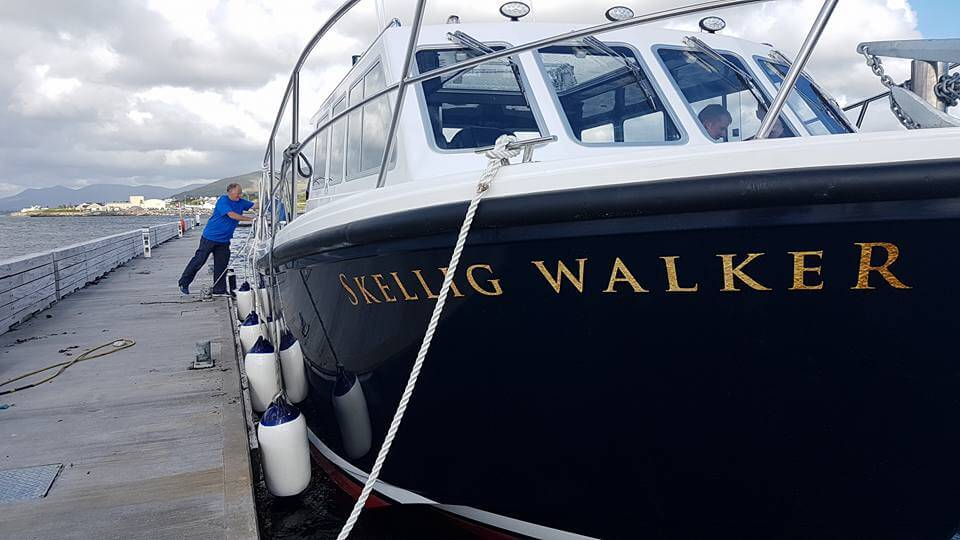 Cygnus Boats | Skellig Walker Cruises | Luxurious transfer to Skellig Michael and the Skellig Coast